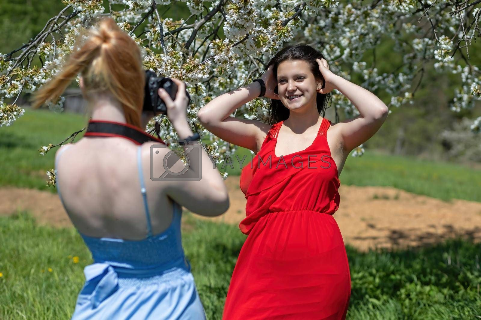Royalty free image of Photographing girlfriends in spring nature. by Frank11