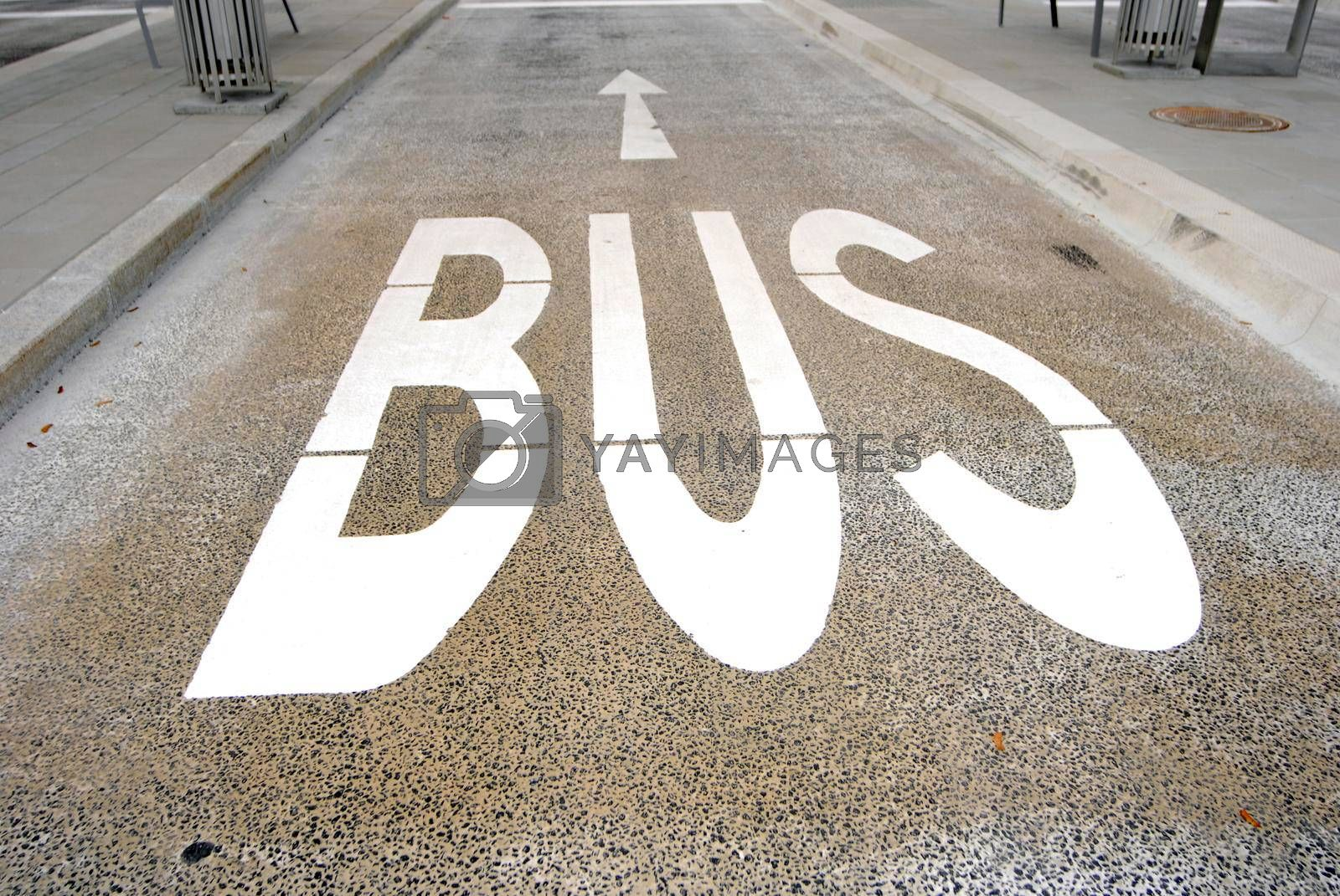 a bus lane marking on the street, public transport and road traffic