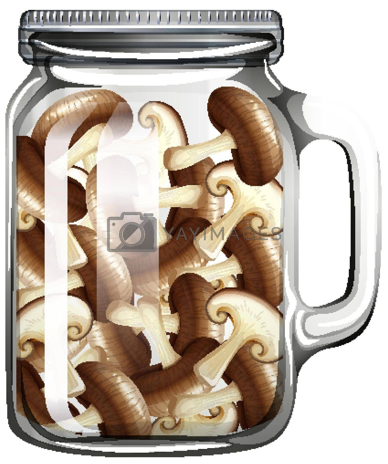 Mushroom in the glass jar illustration