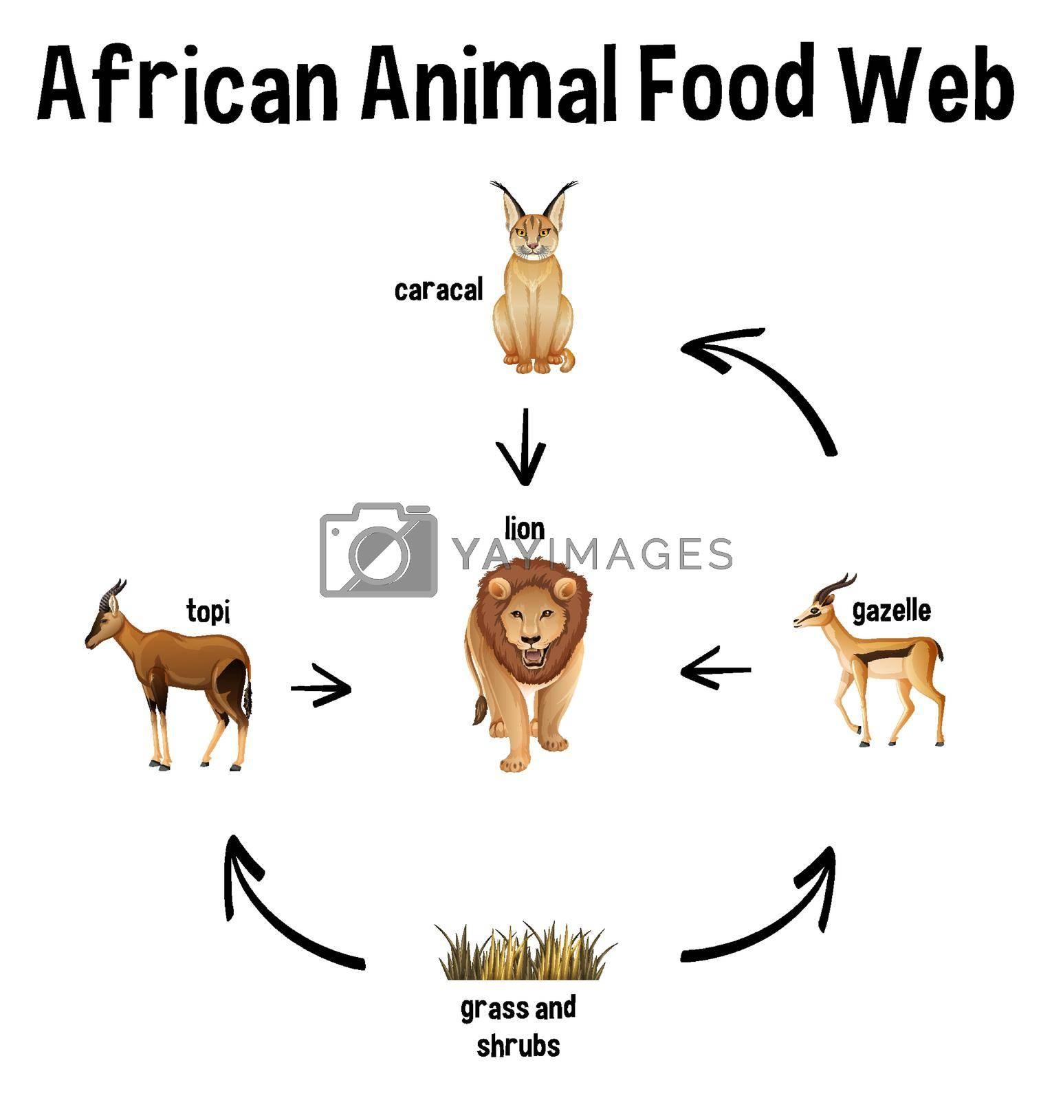 African Animal Food Web for education illustration