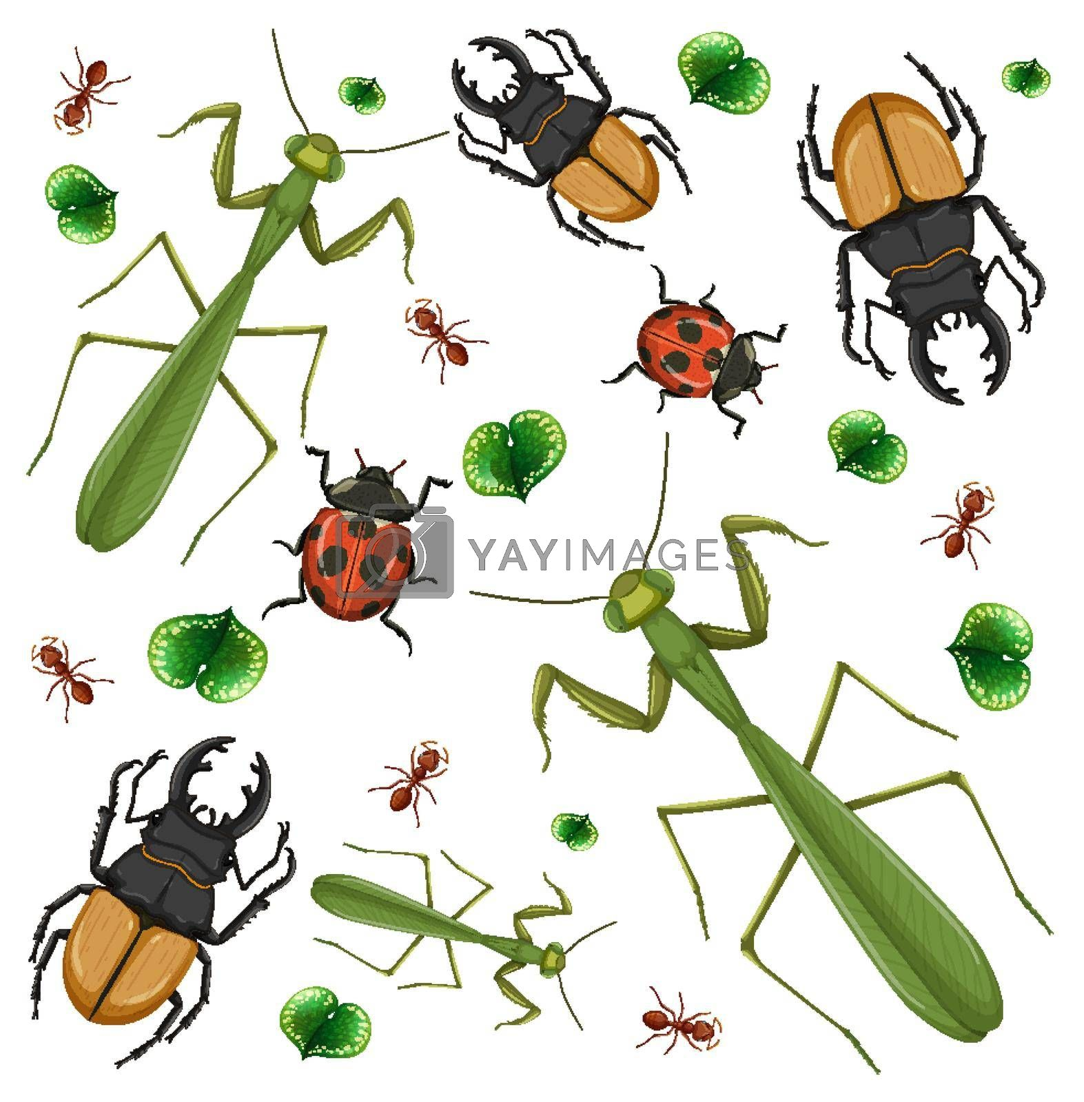 Set of different insects on white background illustration