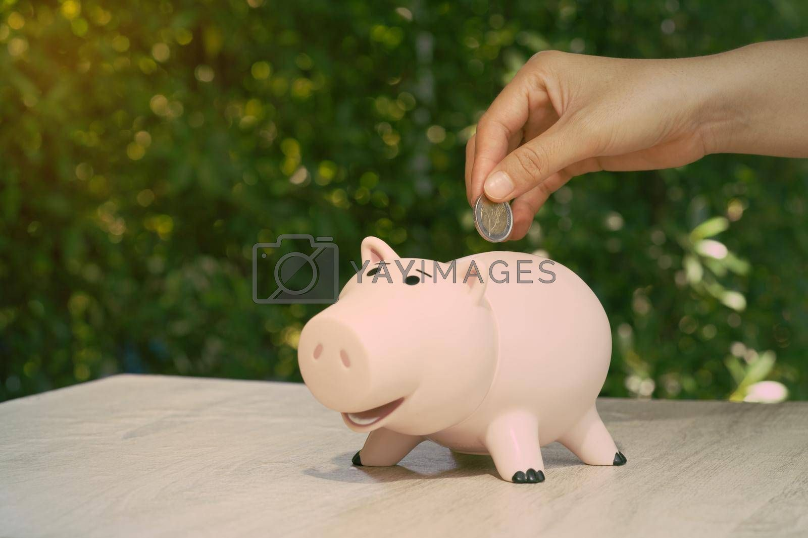 Abstract hand putting the coin in pig piggy bank on desk Ideas for earning a business income and saving for retirement planning.