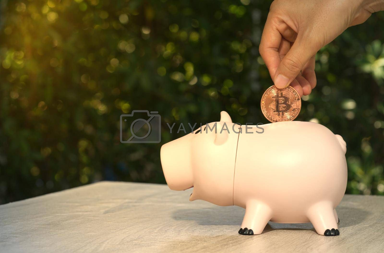 An abstract hand holding a coin of cryptocurrency (Bitcoin) into a pig-shaped piggy bank is placed on the desk. Ideas for earning a business income and saving for retirement planning.