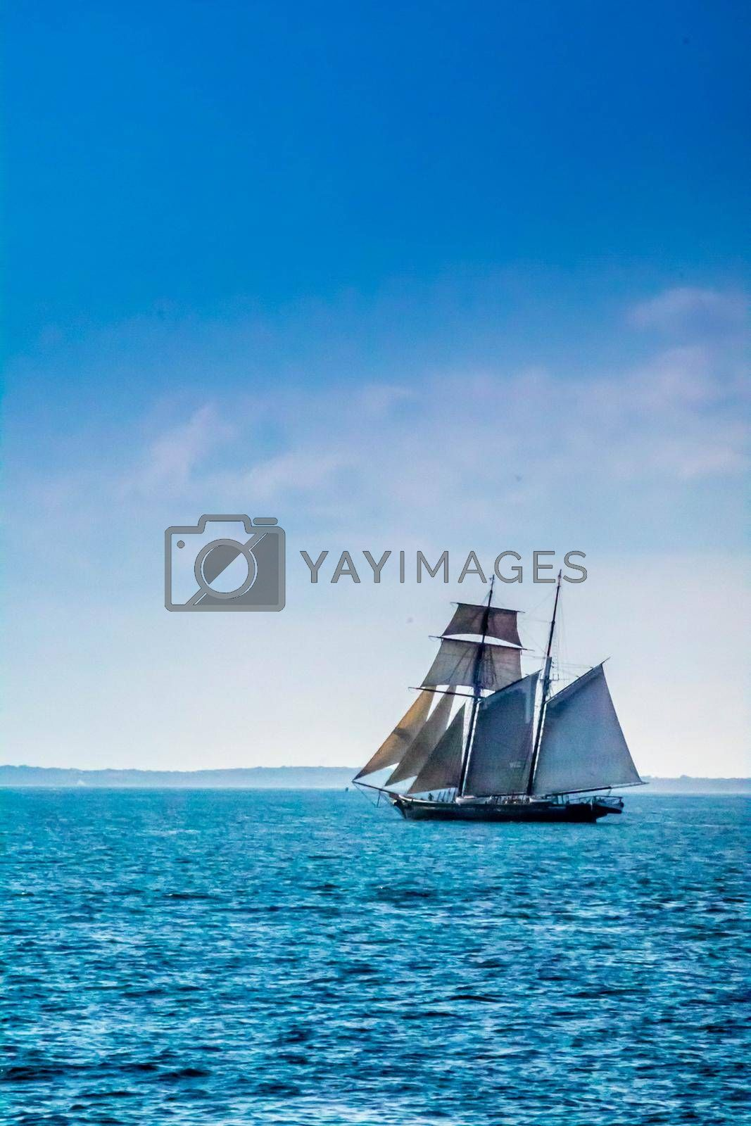 Royalty free image of Cape Cod Marthas Vineyard, MA, USA - Sept 4, 2018: A sailing yacht boat cruising along the shore of Cape Cod by cherialguire