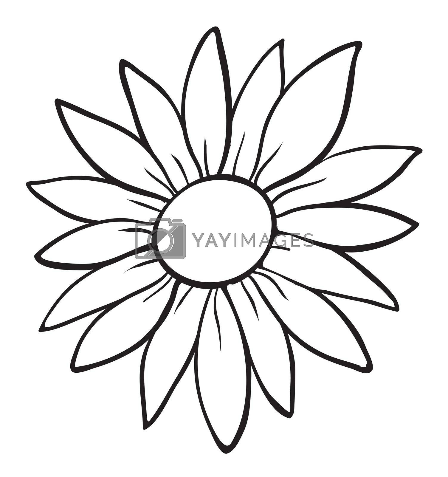 detailed illustration of a flower sketch on white