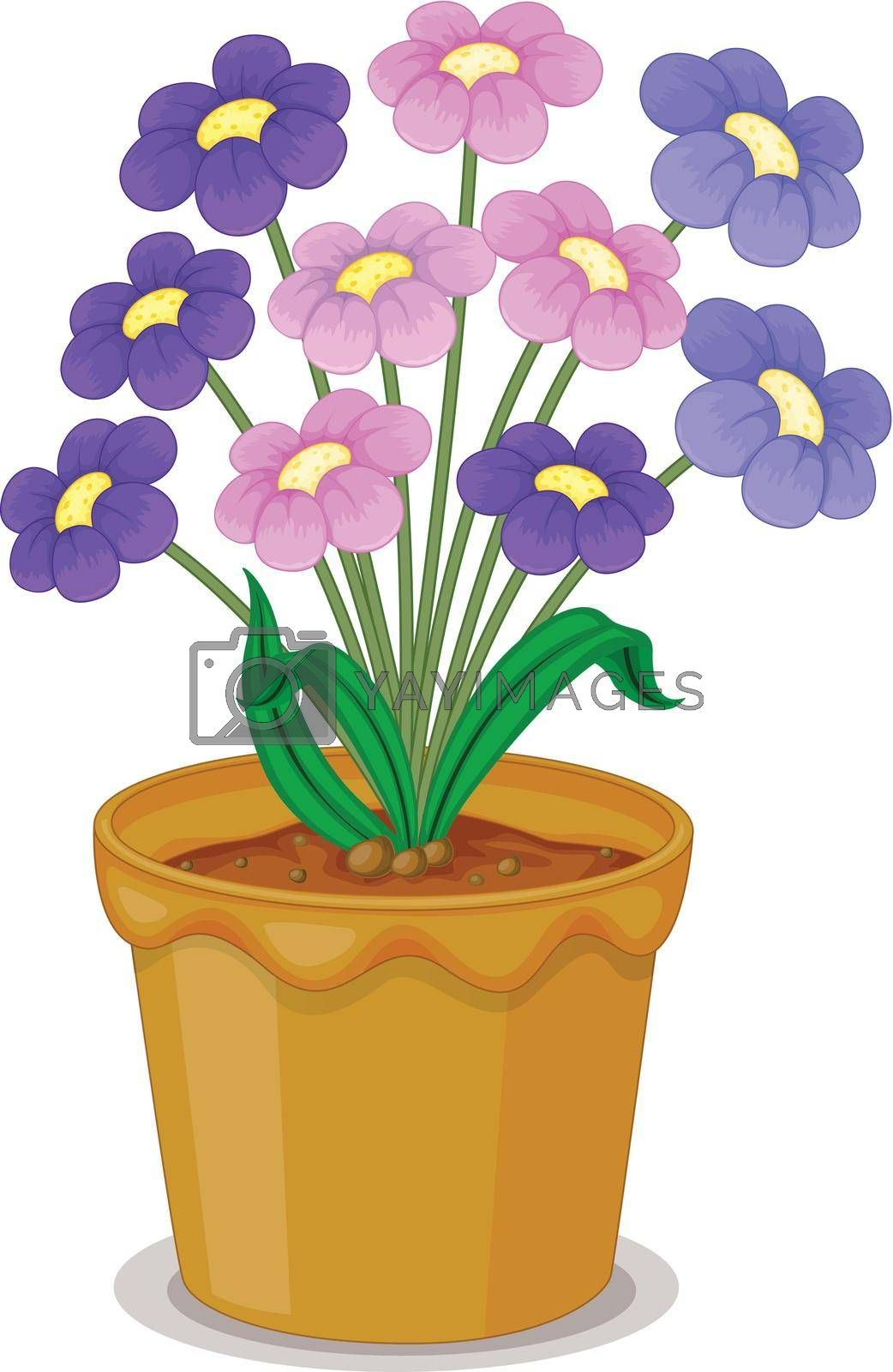 detailed illustration of flowers and a pot on a white background