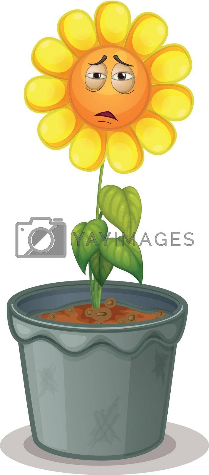 illustration of a flower in the pot