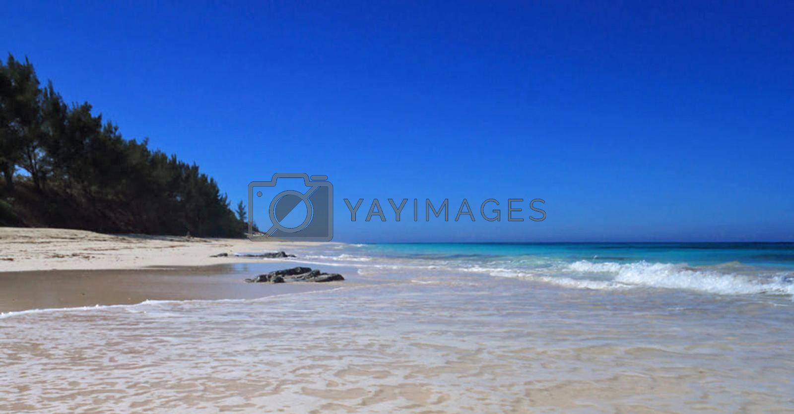 Beautiful pictures of  Bahamas