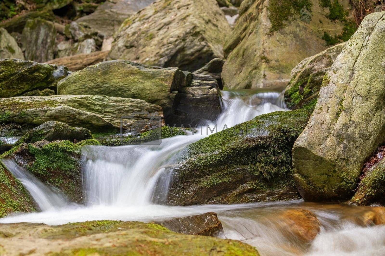 Royalty free image of Silky effect of cascades of running water in a brook closeup. by Frank11