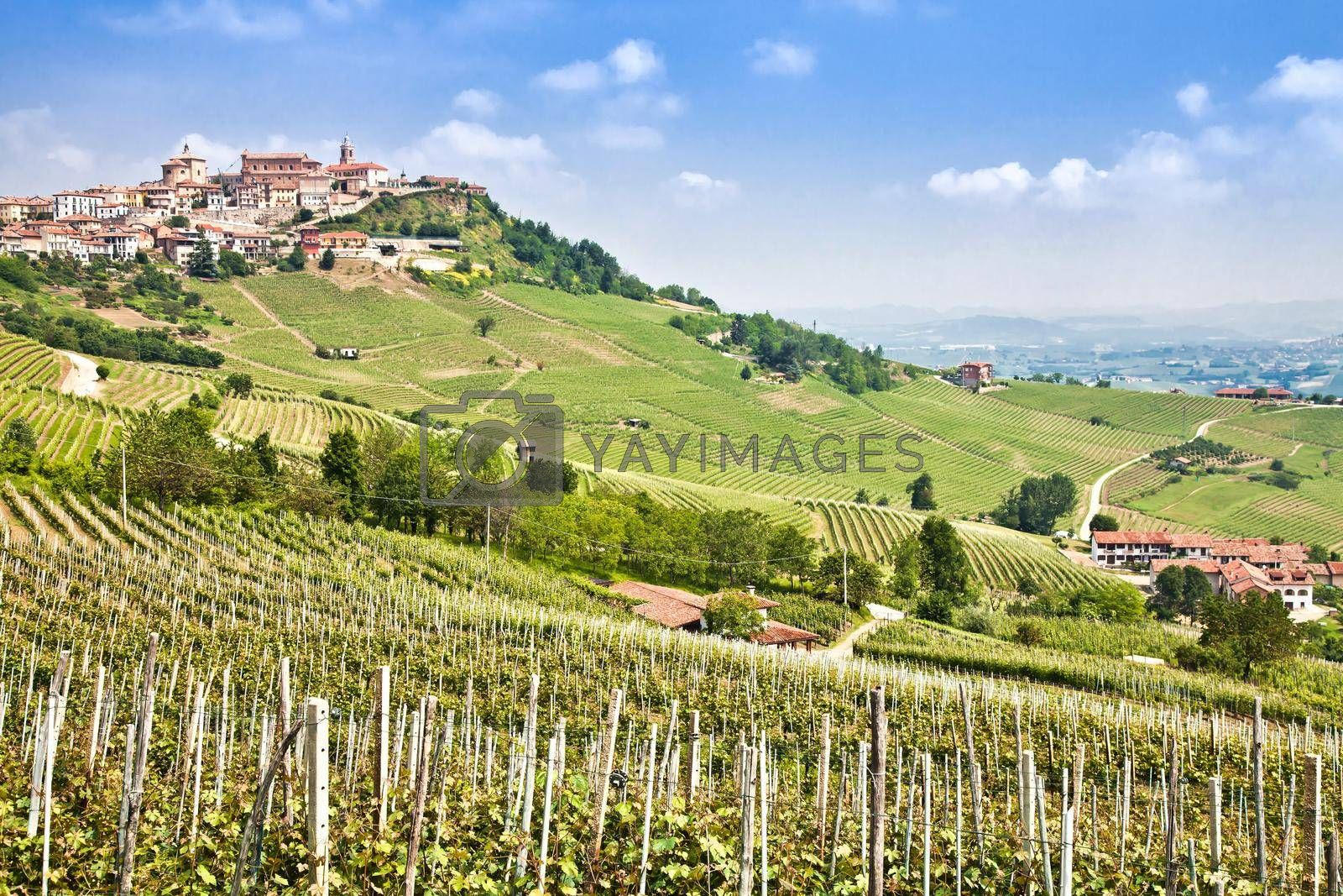 Royalty free image of La Morra. Traditional village close to Barolo and Alba, Piedmont Region, Italy. by Perseomedusa