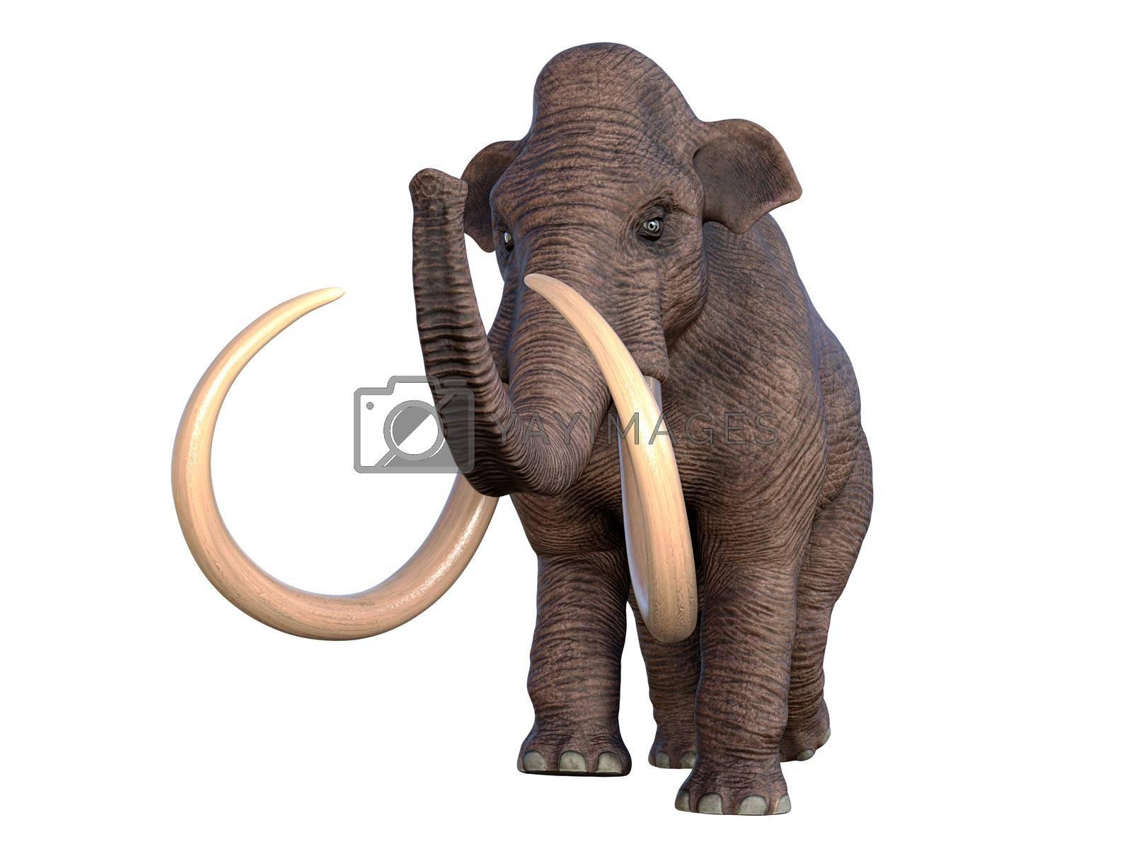 Royalty free image of Columbian Mammoth Walking by Catmando