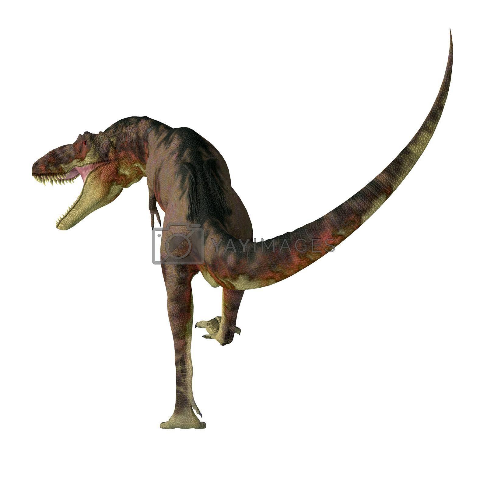 Royalty free image of Daspletosaurus Dinosaur Carnivore by Catmando