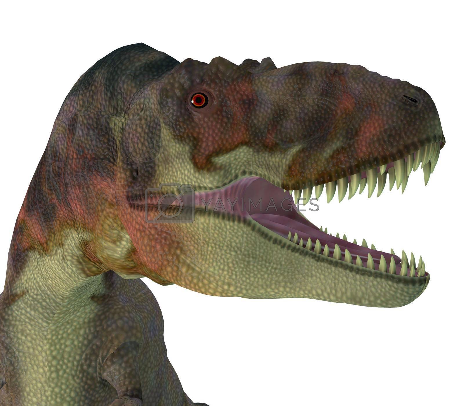 Royalty free image of Daspletosaurus Dinosaur Jaws by Catmando