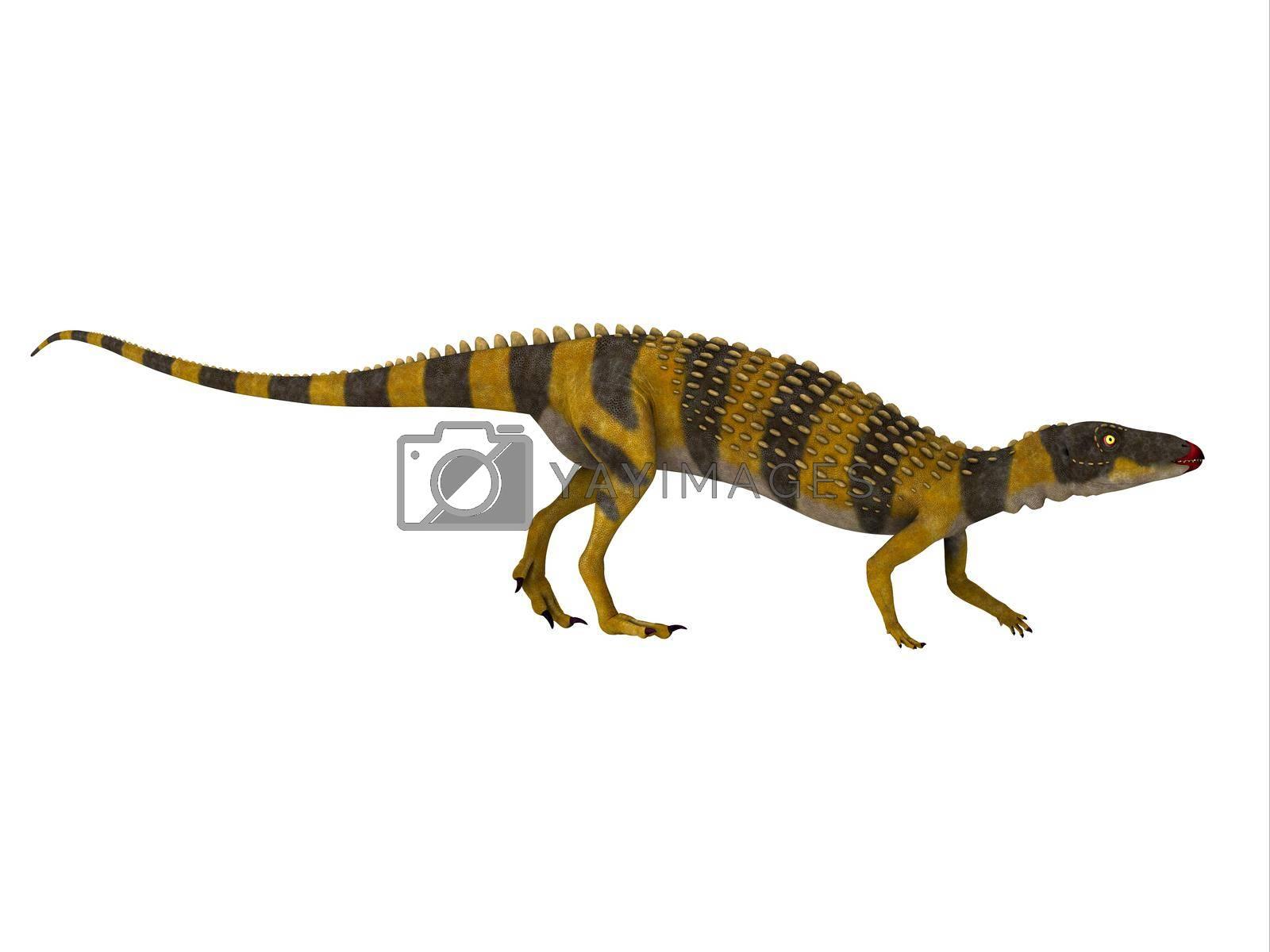 Royalty free image of Scutellosaurus Dinosaur Walking by Catmando