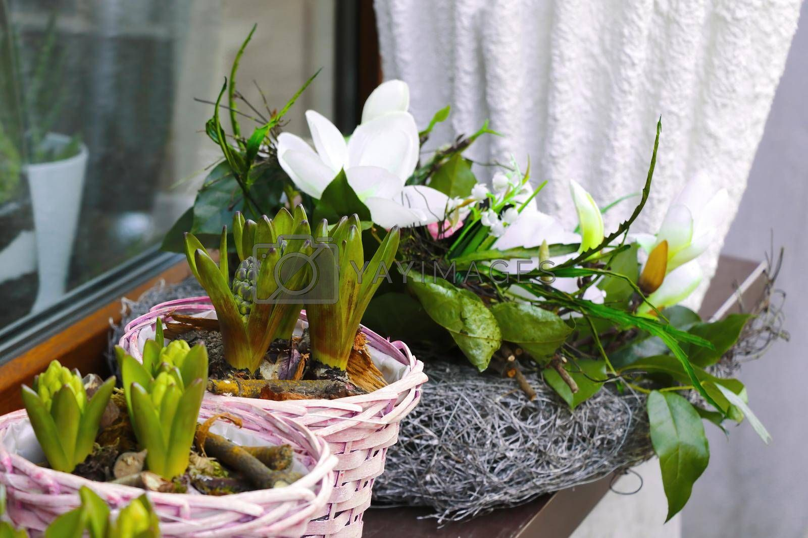 Royalty free image of There is a flowerpot with flowers on the windowsill. by kip02kas