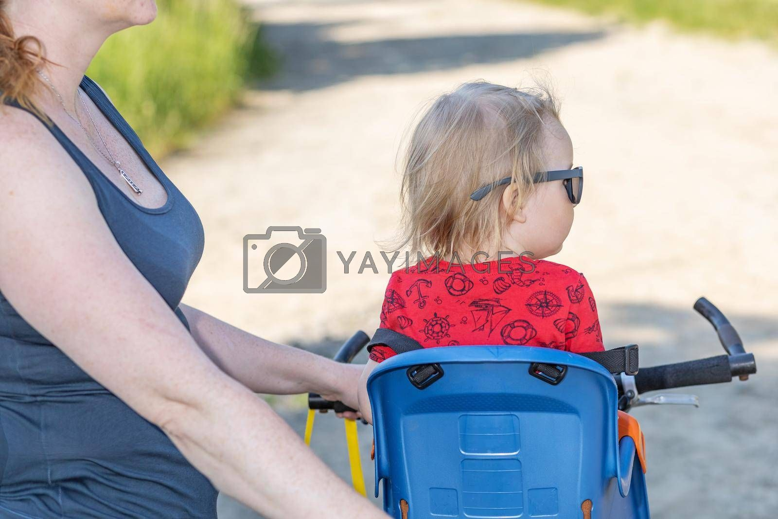 Royalty free image of Back view of little boy sitting in bicycle seat without safety helmet by Frank11