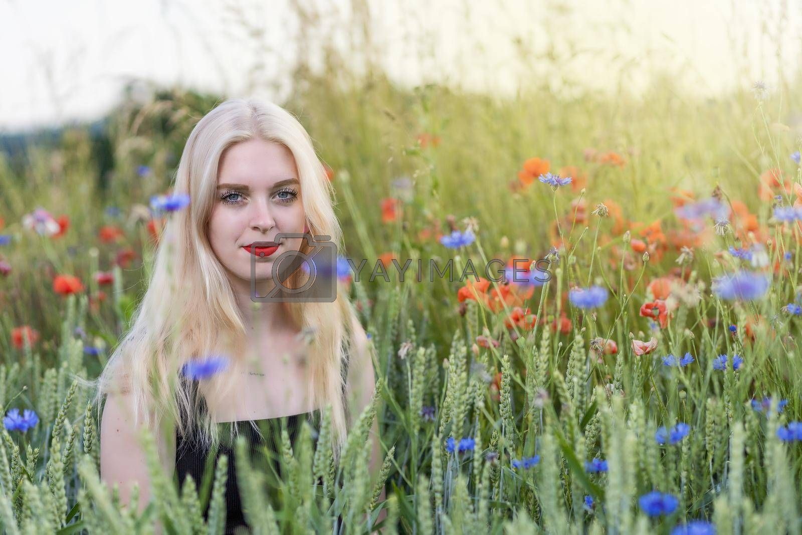 Royalty free image of Blonde young woman is posing in a cereal field with poppies and cornflowers. by Frank11