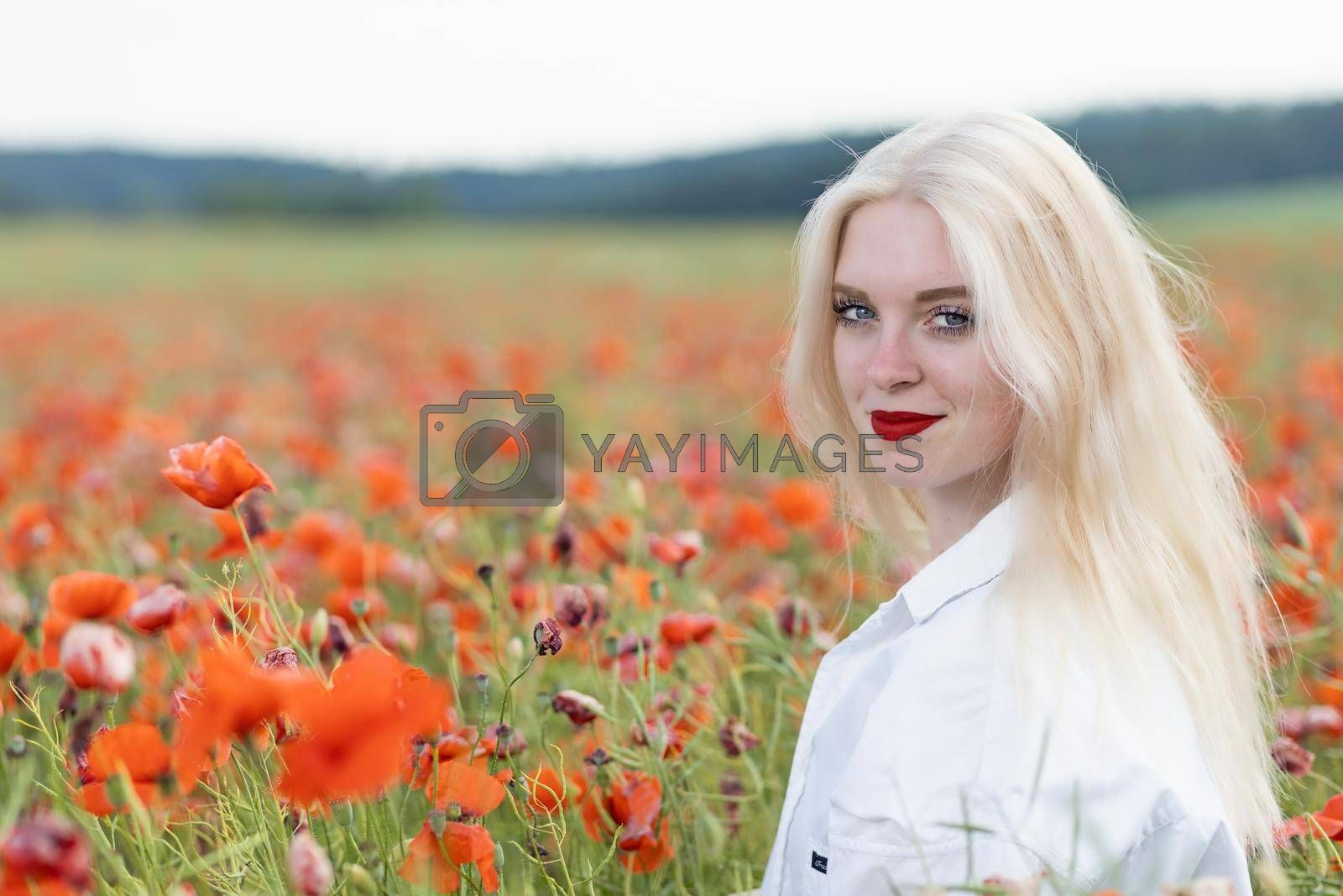 Royalty free image of Portrait of blonde young woman posing in red poppy field.  by Frank11