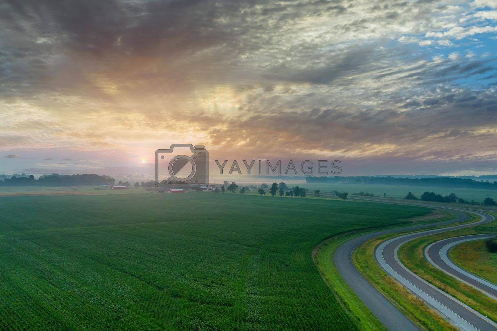 Panorama view in landscape after rain with a light haze sunrise dawn a field with green grass summer near road