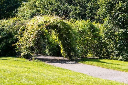 Arc passage in garden