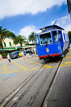 blue tram editorial