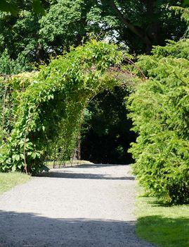 Arc pathway in garden