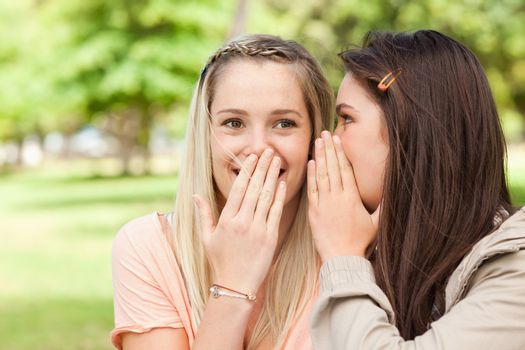 Close-up of teenagers sharing a secret with hands in front of the mouth in a park