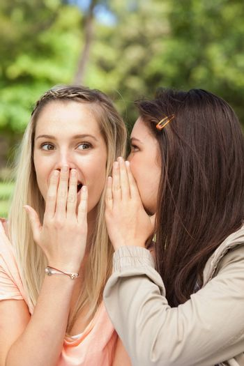 Close-up of female teenagers sharing a secret with hands in front of the mouth in a park
