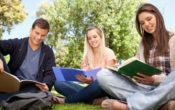 Low angle-shot of young people studying in a park