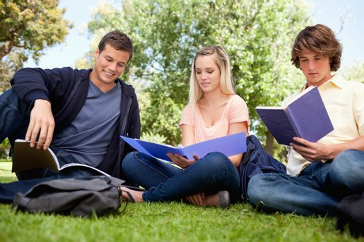 Low angle-shot of three students working in a park