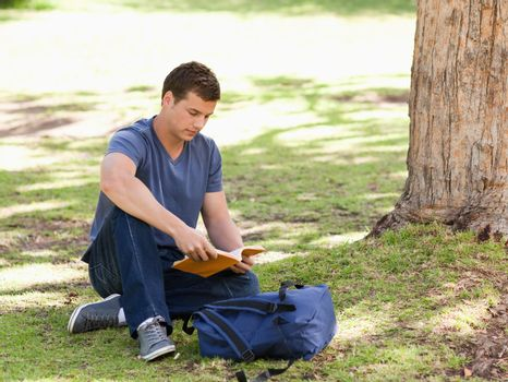 Student reading a textbook sitting in a park