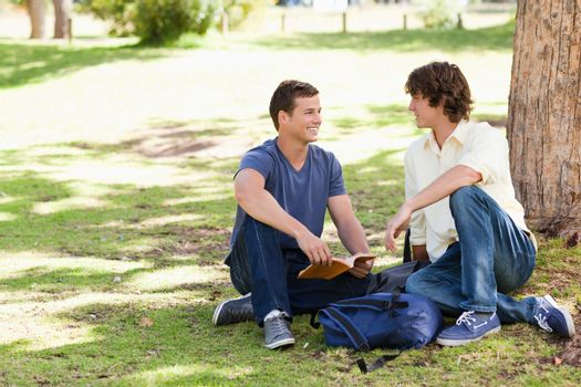 Portrait of two male students talking in a park