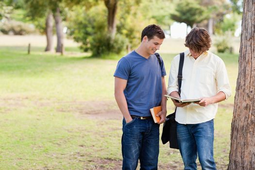 Two standing male students talking in a park