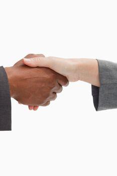 firm handshake