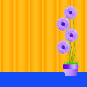 perennial daisies vector