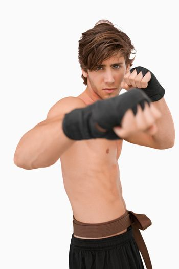 Martial arts fighter in fighting pose