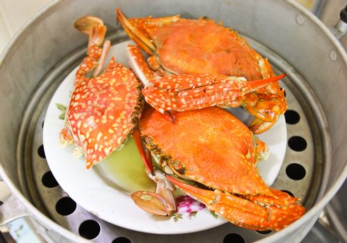 Crabs in steam pot