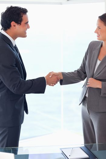Side view of business people welcoming each other