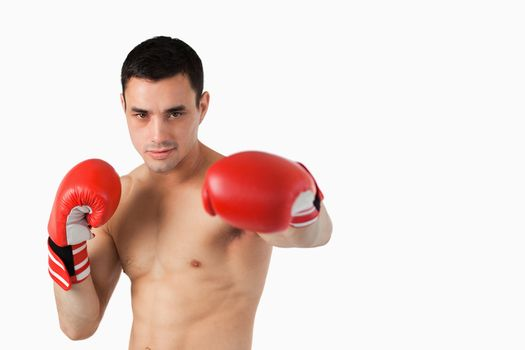 Young boxer performing left punch