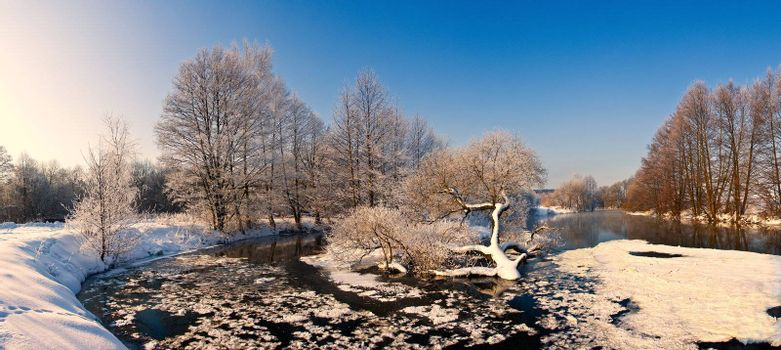 trees with frost on winter river