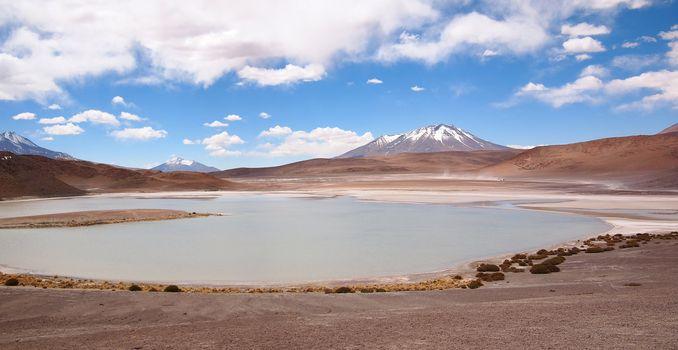 Laguna at the altiplano in Bolivia