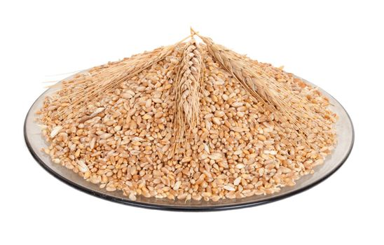 Wheat grains on plate
