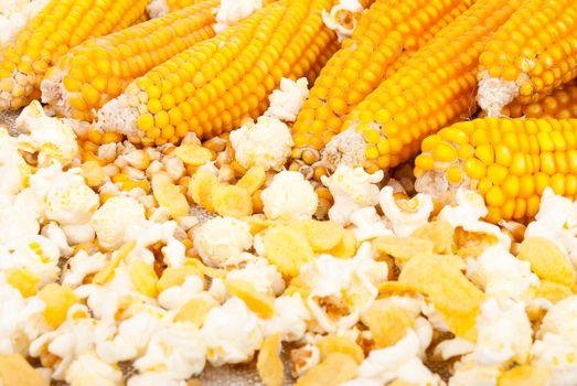 Ears of corn and popcorn