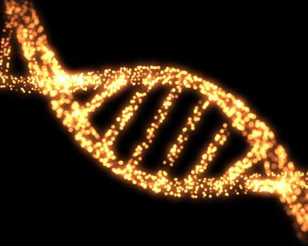 Orange DNA Helix