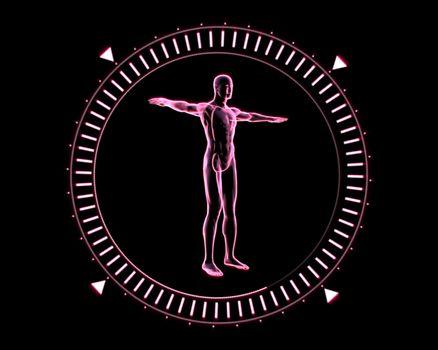 Pink Human form