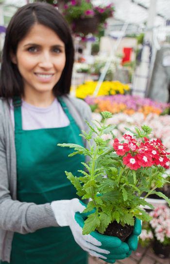 Florist smiling while planting