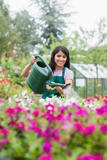 Assistant watering flowers