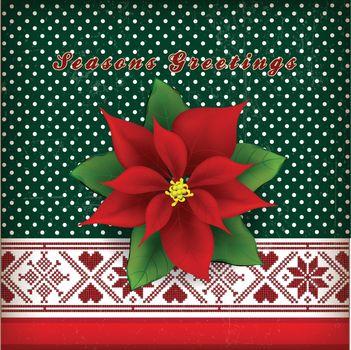 Christmas card with Christmas flower poinsettia