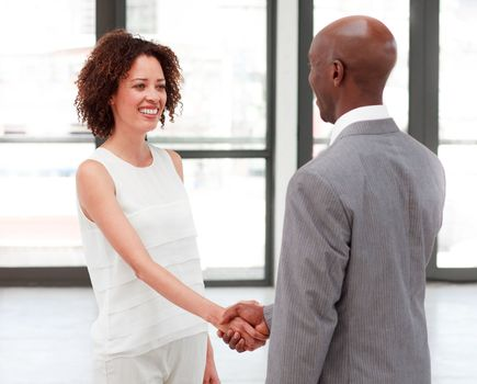 Business people shaking hands in agreement