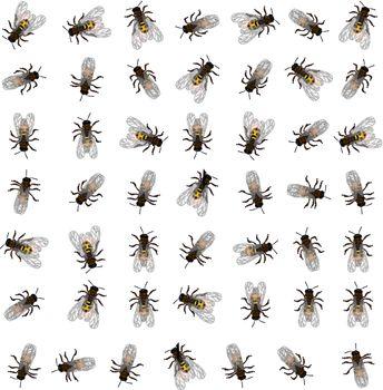 Seamless bee pattern